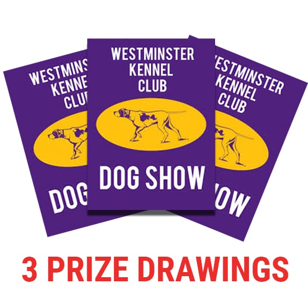 WESTMINSTER 3 TICKETS