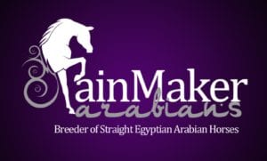 rainmaker arabians